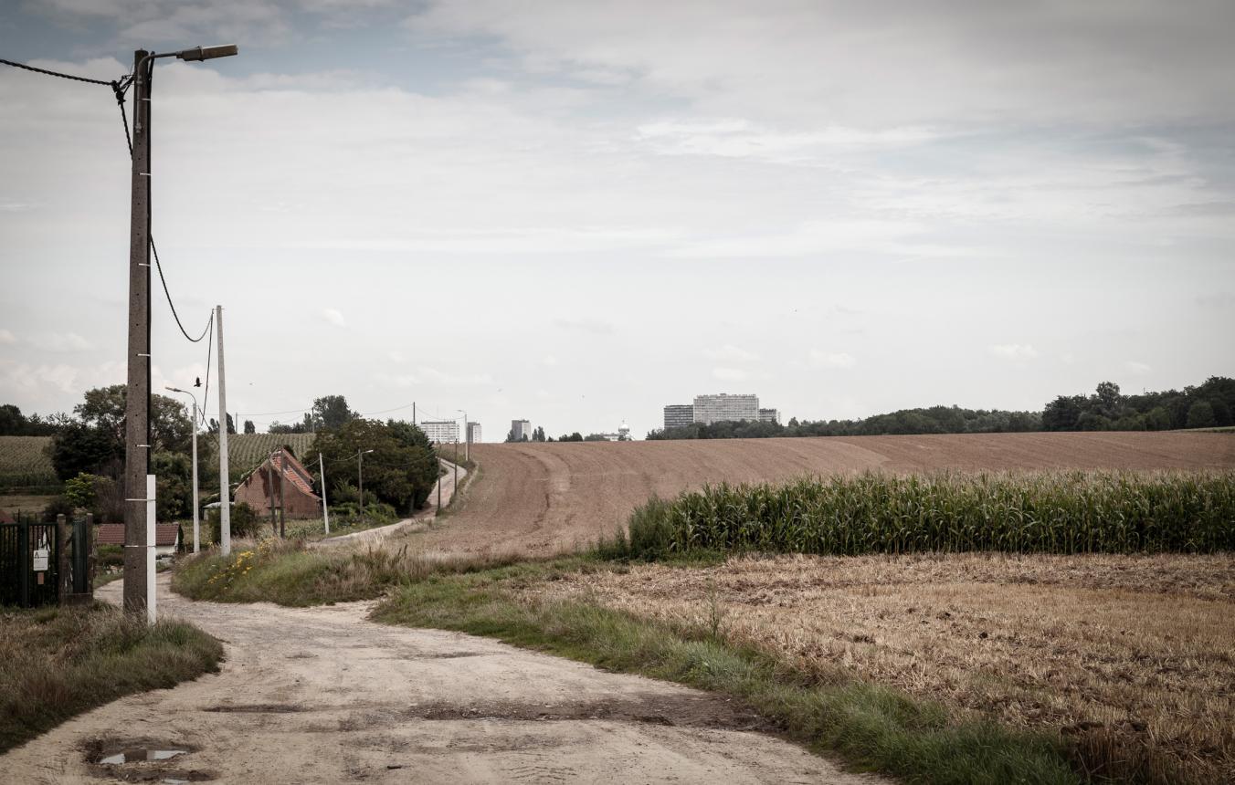 Molenbeekvallei ©Tim Van de Velde
