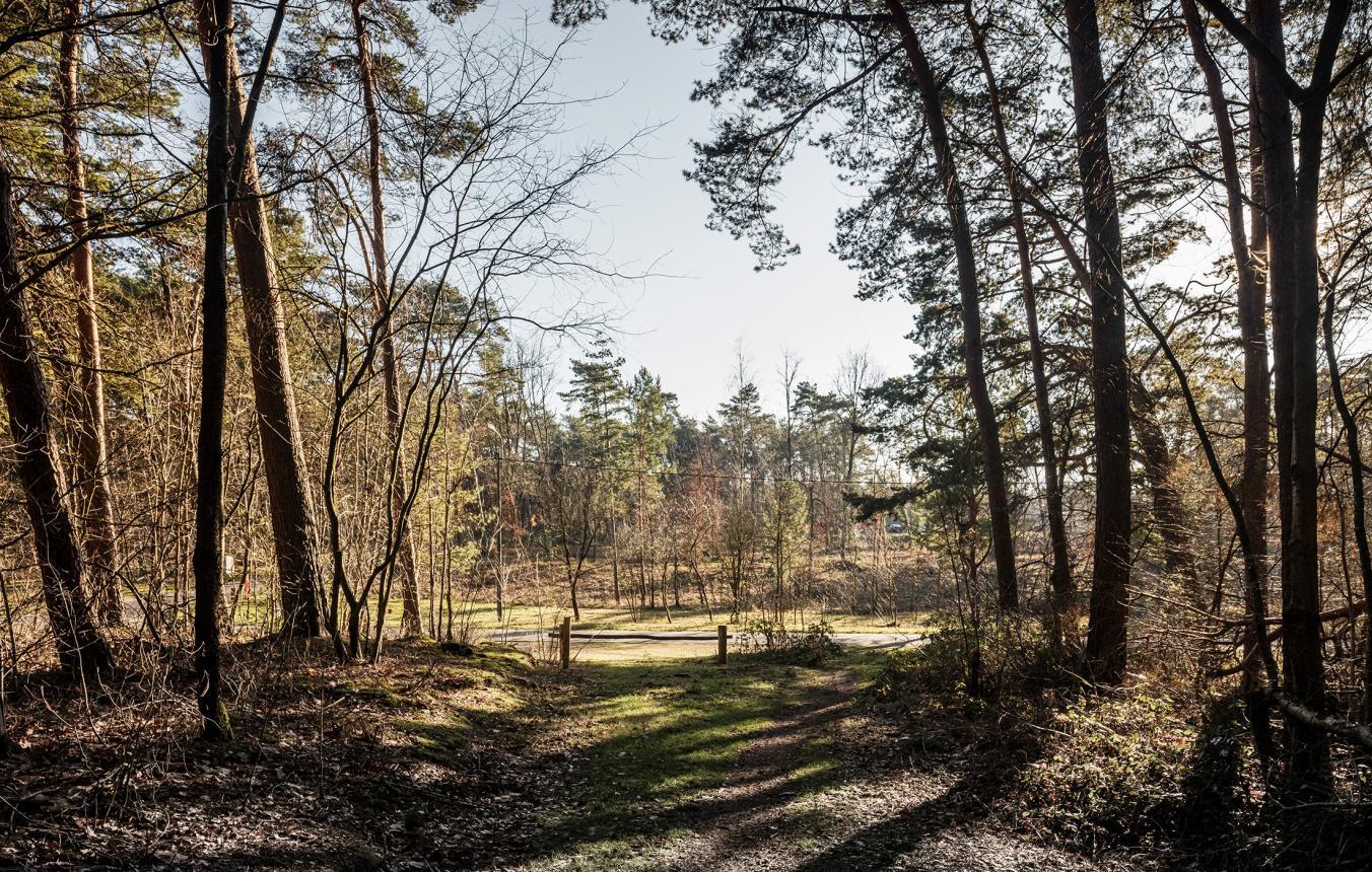 Sitefoto's OO3903 Wijk Kolderbos Genk