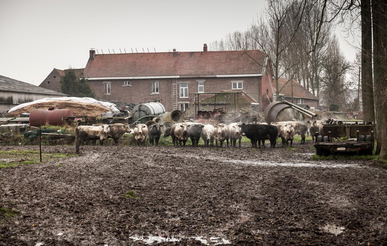 PPPL5 - Herk-De-Stad - Hoeve De Waterkant - ©Tim Van de Velde