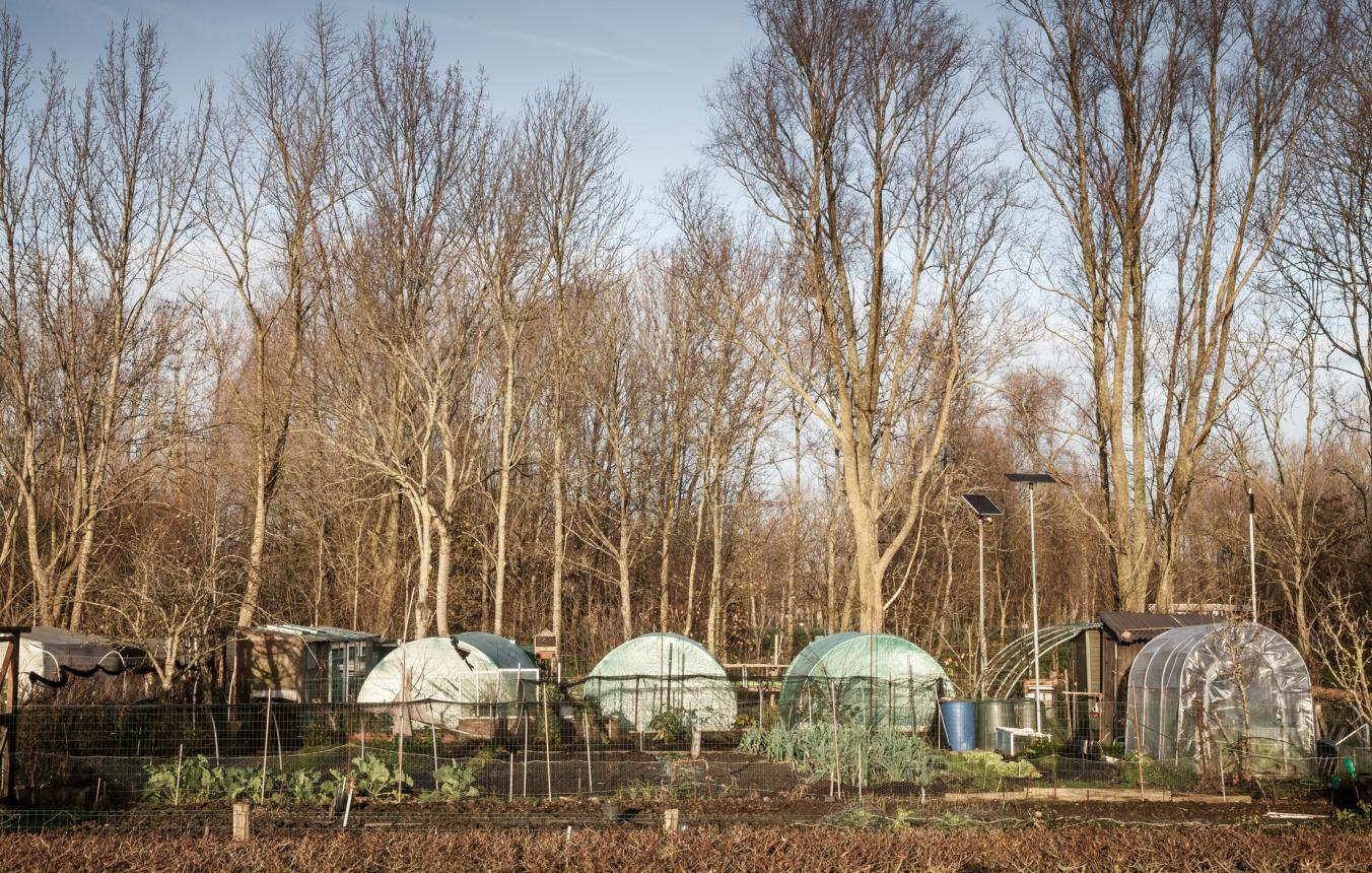 PPPL4 - Oostende - Landbouwpark Stene - ©Tim Van de Velde